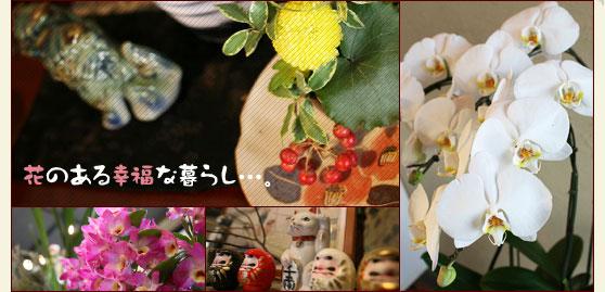 花のある幸福な暮らし…。 磐田市 花屋 ガーデニング