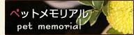 ペットメモリアル 磐田市 花屋 ガーデニング